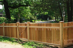 wood fence backyard